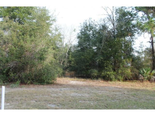 256 Fort Smith Boulevard, Deltona, FL 32738 (MLS #V4708314) :: Griffin Group
