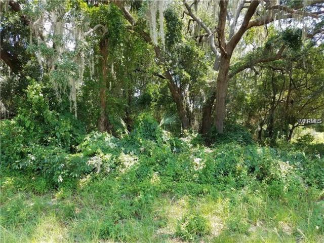 2949 Lake Helen Osteen Road, Deltona, FL 32738 (MLS #V4717191) :: GO Realty