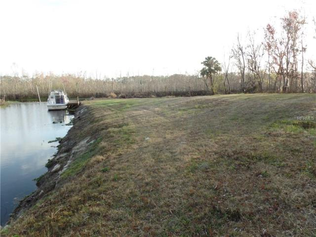 Brandy Cove, Enterprise, FL 32725 (MLS #V4722615) :: Team Buky