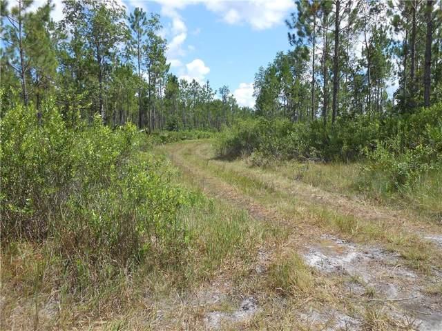 State Road 40, Pierson, FL 32180 (MLS #V4723371) :: Team Borham at Keller Williams Realty