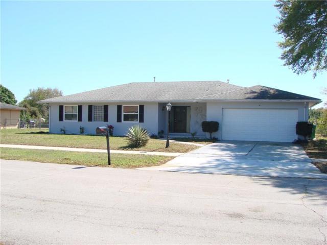 2517 Delaware Road, Deltona, FL 32738 (MLS #V4723373) :: Godwin Realty Group