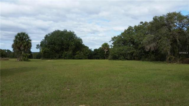 5612 Strong Point, Weirsdale, FL 32195 (MLS #V4900458) :: RE/MAX Realtec Group