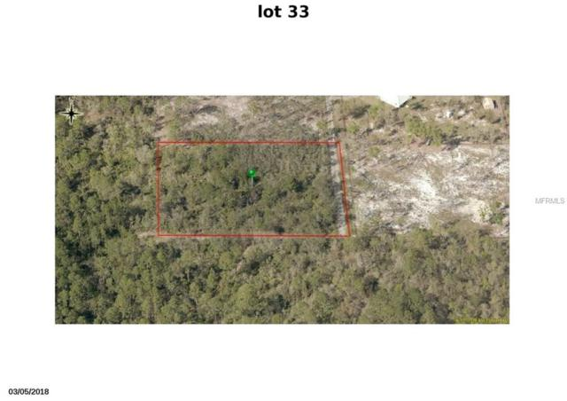 Winchester Lake Drive Lot 33- 2, De Leon Springs, FL 32130 (MLS #V4901791) :: 54 Realty