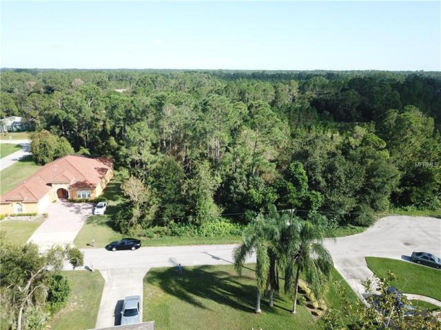 2715 Augustine Court, Deltona, FL 32738 (MLS #V4902621) :: The Duncan Duo Team