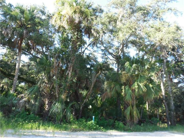 Arlington Avenue, New Smyrna Beach, FL 32168 (MLS #V4902814) :: Mark and Joni Coulter | Better Homes and Gardens