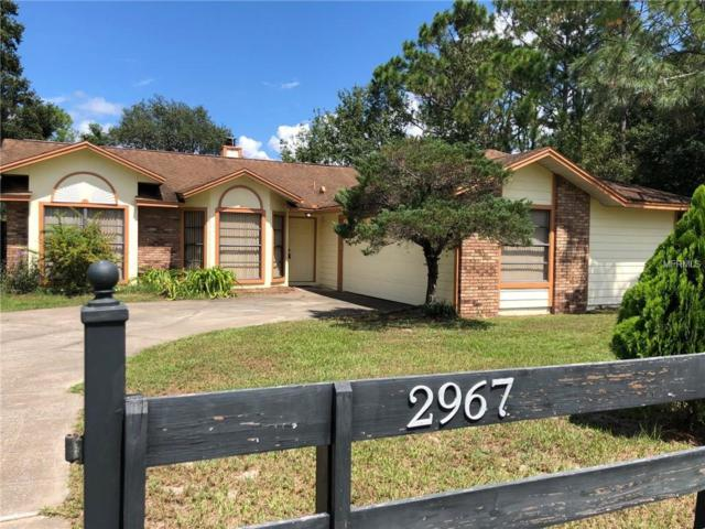 2967 Lake Helen Osteen Road, Deltona, FL 32738 (MLS #V4903030) :: GO Realty