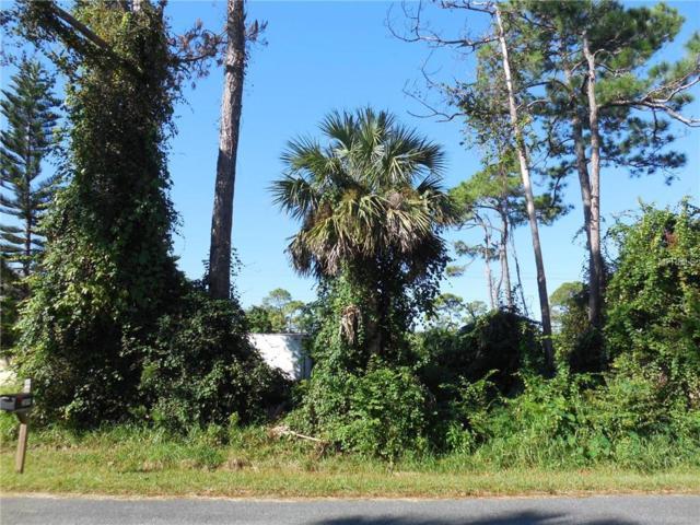 Willow Oak Drive, Edgewater, FL 32141 (MLS #V4904195) :: Revolution Real Estate