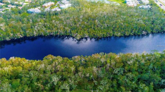 490 River Square Lane, Ormond Beach, FL 32174 (MLS #V4904374) :: The Duncan Duo Team