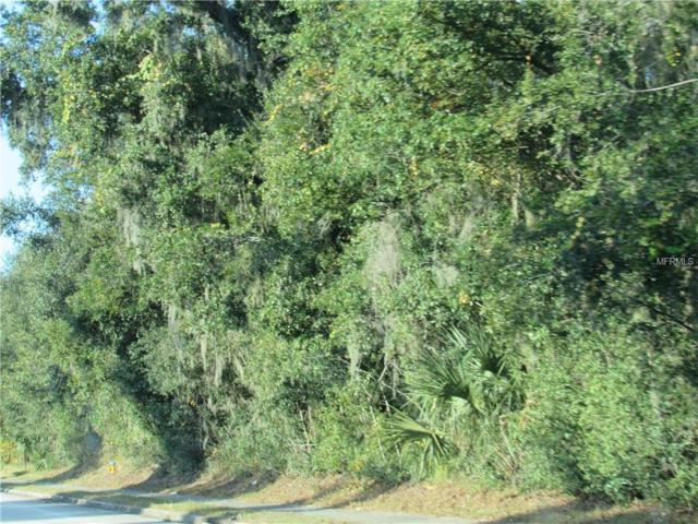 TBD S Spring Garden Avenue, Deland, FL 32720 (MLS #V4904449) :: Revolution Real Estate