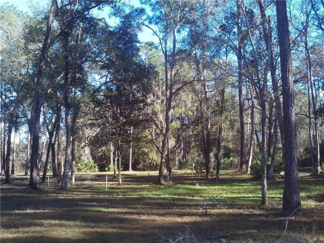 113 Old Spanish Bluff Road, EAST PALATKA, FL 32131 (MLS #V4904871) :: The Duncan Duo Team