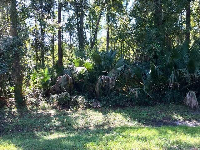 1623 Caroline Drive, Pierson, FL 32180 (MLS #V4907546) :: Team Buky