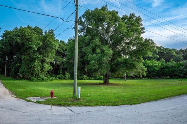 John Street, Lake Helen, FL 32744 (MLS #V4909152) :: Team TLC | Mihara & Associates