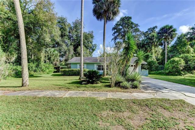 435 Desoto Avenue, De Leon Springs, FL 32130 (MLS #V4910733) :: 54 Realty