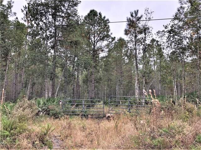 Volusian Forest Trail, Pierson, FL 32180 (MLS #V4910989) :: Lock & Key Realty