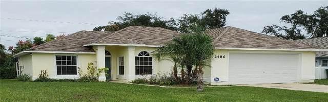 2486 Candlewick Street, Deltona, FL 32738 (MLS #V4915945) :: Florida Life Real Estate Group