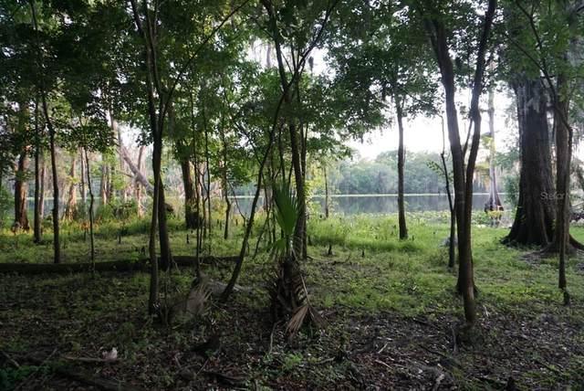 2732 Kingfisher Village, Deland, FL 32720 (MLS #V4917059) :: Vacasa Real Estate