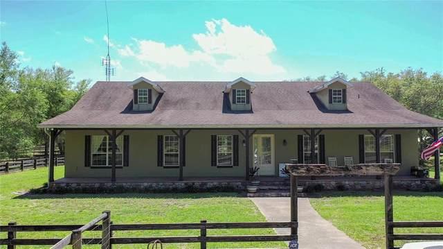 1910 Saratoga Farms Trail, De Leon Springs, FL 32130 (MLS #V4918814) :: Florida Life Real Estate Group