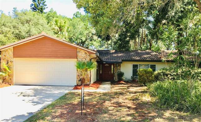 4018 Sandpiper Court, Palm Harbor, FL 34684 (MLS #V4918989) :: Team Borham at Keller Williams Realty