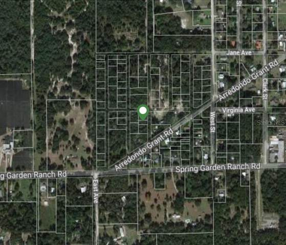 Lot #0090 Vacant, De Leon Springs, FL 32130 (MLS #V4919164) :: American Premier Realty LLC
