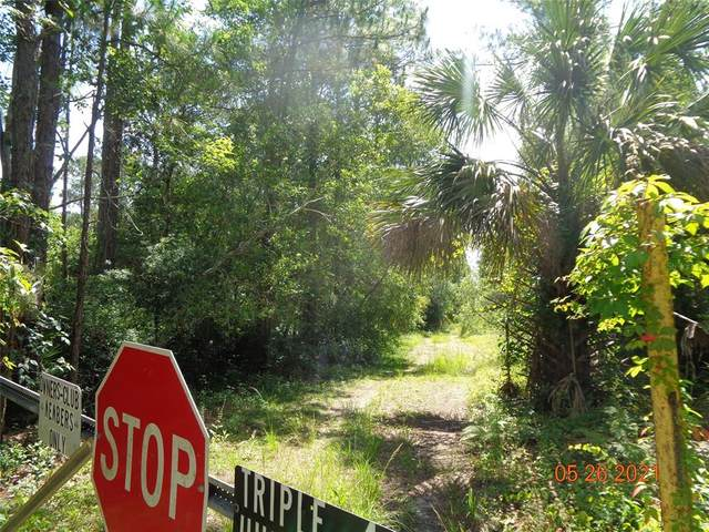 289 Deland Crossing Boulevard, Deland, FL 32724 (MLS #V4919235) :: RE/MAX Marketing Specialists