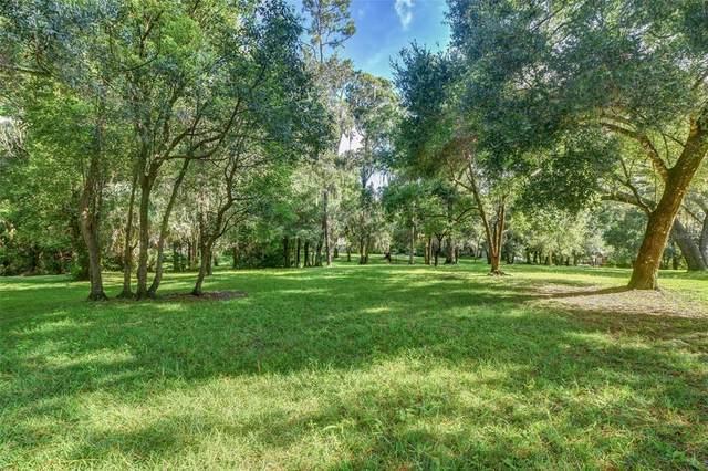 Ridgewood Street, Deland, FL 32720 (MLS #V4920513) :: GO Realty
