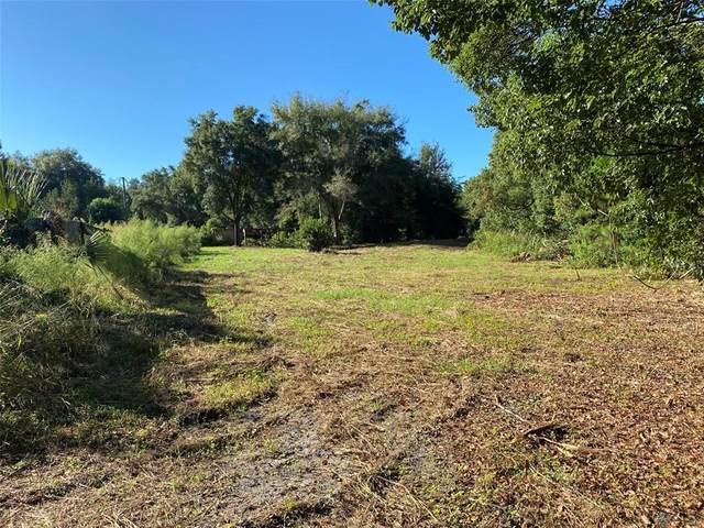 678 Braddock Road, Pierson, FL 32180 (MLS #V4920734) :: Everlane Realty