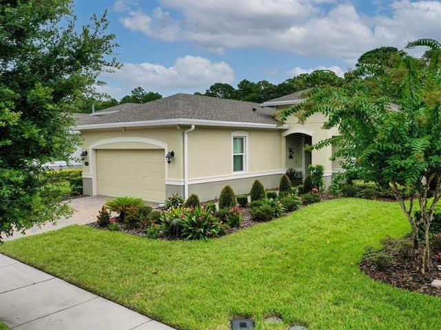 1341 Hayton Avenue, Deland, FL 32724 (MLS #V4920773) :: American Premier Realty LLC
