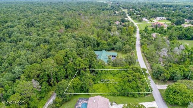 5335 Suwannee Road, Weeki Wachee, FL 34607 (MLS #W7608785) :: The Duncan Duo Team