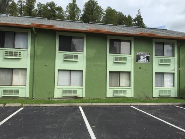 20893 Haulover Cove E10, Lutz, FL 33558 (MLS #W7622149) :: The Duncan Duo Team