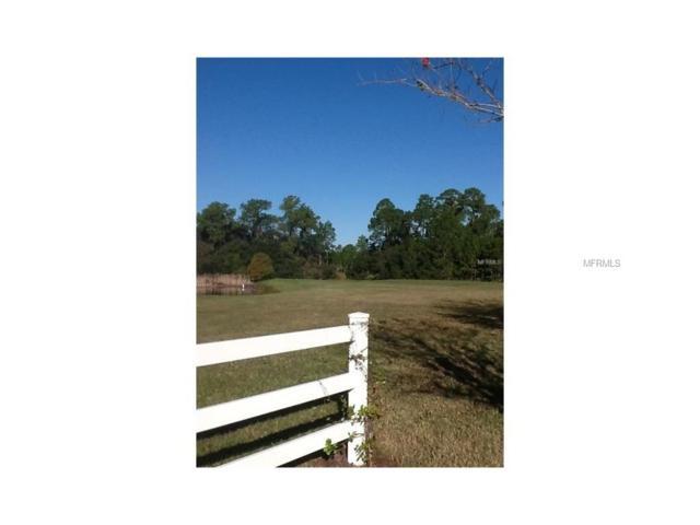 0 Zachary Drive, New Port Richey, FL 34655 (MLS #W7625918) :: The Duncan Duo Team