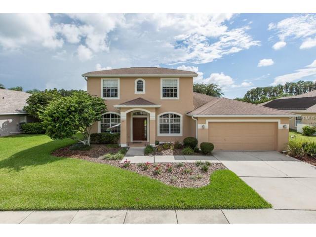 1339 Wyndham Lakes Drive, Odessa, FL 33556 (MLS #W7632949) :: Griffin Group