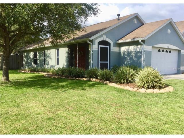 8643 Persea Court, Trinity, FL 34655 (MLS #W7633703) :: Delgado Home Team at Keller Williams