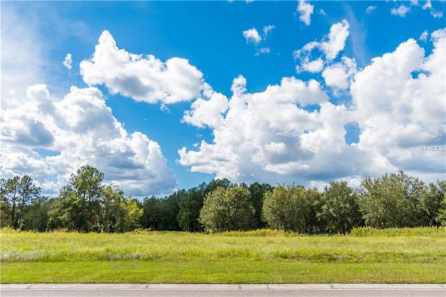 N Grand Summit Drive, Brooksville, FL 34601 (MLS #W7634587) :: The Duncan Duo Team