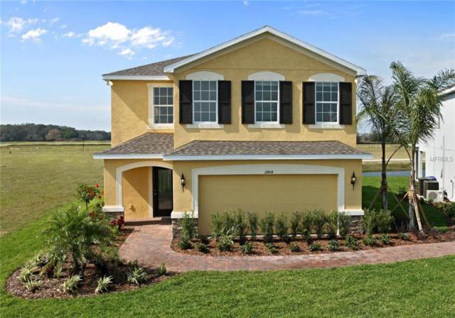 14231 Poke Ridge Drive, Riverview, FL 33579 (MLS #W7635622) :: The Lockhart Team