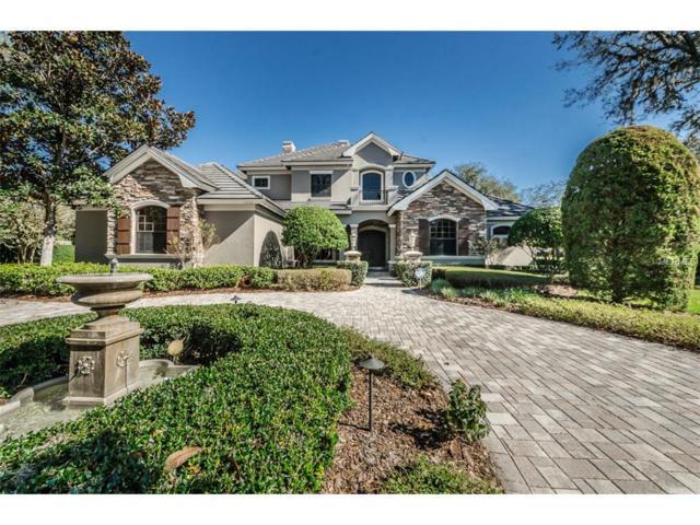 10636 Pontofino Circle, Trinity, FL 34655 (MLS #W7635711) :: The Lockhart Team