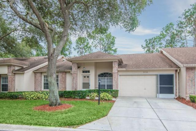 9726 Sweeping View Drive, New Port Richey, FL 34655 (MLS #W7635905) :: The Duncan Duo Team