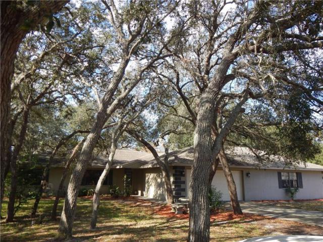 18119 Oak Way Drive, Hudson, FL 34667 (MLS #W7636277) :: Griffin Group