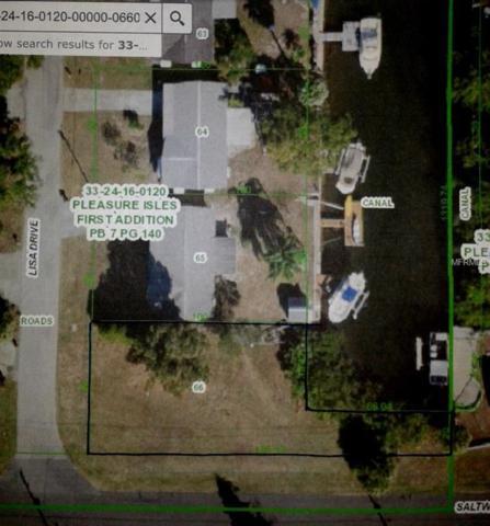 Lisa Drive, Hudson, FL 34667 (MLS #W7636573) :: Godwin Realty Group