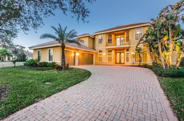 10238 Pontofino Circle, Trinity, FL 34655 (MLS #W7637318) :: The Lockhart Team
