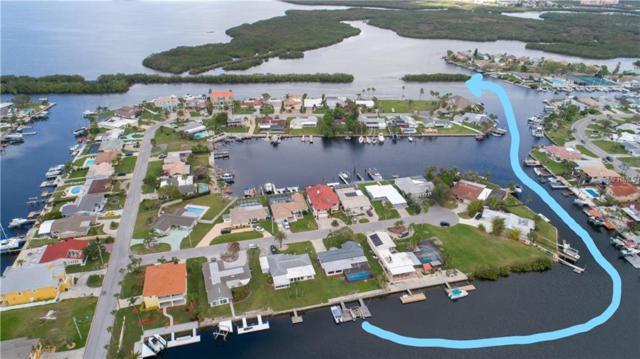 3644 Corsair Court, New Port Richey, FL 34652 (MLS #W7638281) :: Team Bohannon Keller Williams, Tampa Properties