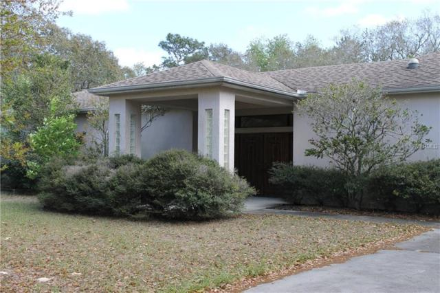 14330 Dabney Court, Spring Hill, FL 34610 (MLS #W7638846) :: The Duncan Duo Team