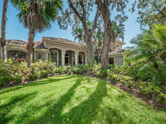 10610 Pontofino Circle, Trinity, FL 34655 (MLS #W7638945) :: The Duncan Duo Team