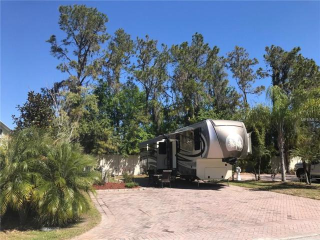 6849 Amanda Vista Circle, Land O Lakes, FL 34637 (MLS #W7638965) :: The Duncan Duo Team
