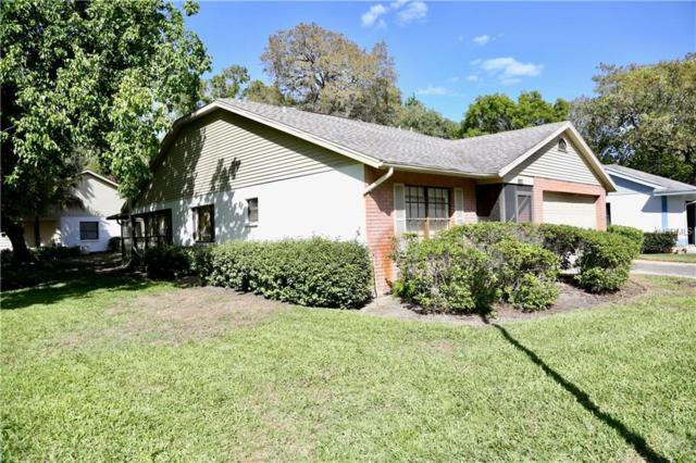 11729 White Ash Drive, New Port Richey, FL 34654 (MLS #W7639294) :: Remax Alliance