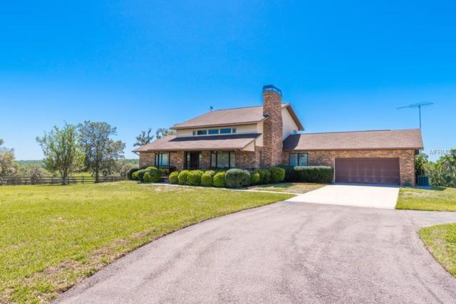4445 White Road, Brooksville, FL 34602 (MLS #W7800338) :: G World Properties