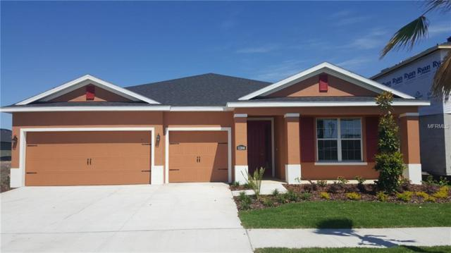 12206 Angel Mist Place, Riverview, FL 33579 (MLS #W7800455) :: The Duncan Duo Team