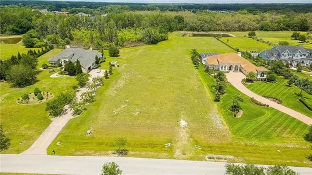 17208 Breeders Cup Drive, Odessa, FL 33556 (MLS #W7800808) :: Mark and Joni Coulter | Better Homes and Gardens