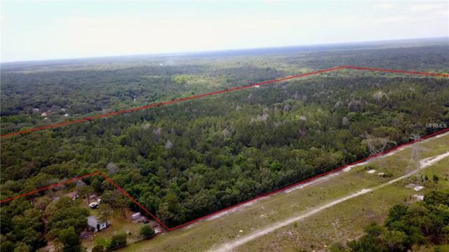 Litte Ranch, Spring Hill, FL 34610 (MLS #W7800922) :: The Duncan Duo Team
