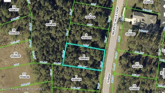 4835 Majestic Hills Loop, Brooksville, FL 34601 (MLS #W7801291) :: Team Borham at Keller Williams Realty