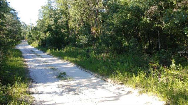4801 N Mattox Pt, Crystal River, FL 34428 (MLS #W7801704) :: Griffin Group